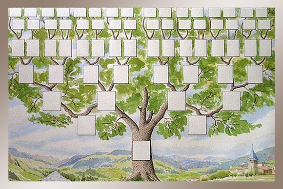 Август 6 genealogy генеалогия