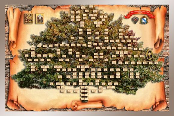 Фото родословного дерева
